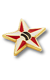 Metal Club Badge - Small Star Bowler