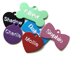 design pet tags online